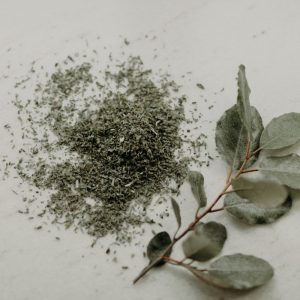 Catnip Herb - Catnip Herb (C/S) - ½ lb - Lone Star Botanicals
