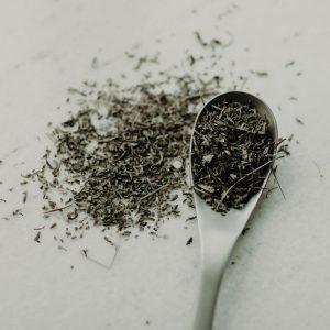 Stevia Herb - sugar substitute