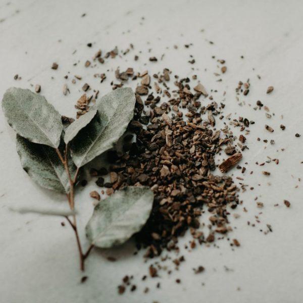 Wild Cherry Bark - natural decongestant