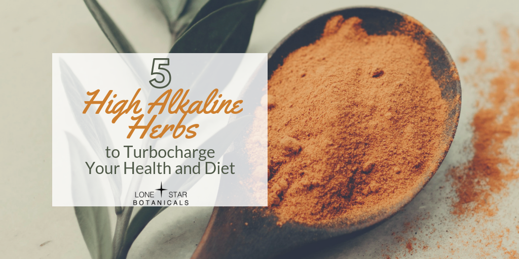 5 High Alkaline Herbs to Turbocharge Your Health and Diet