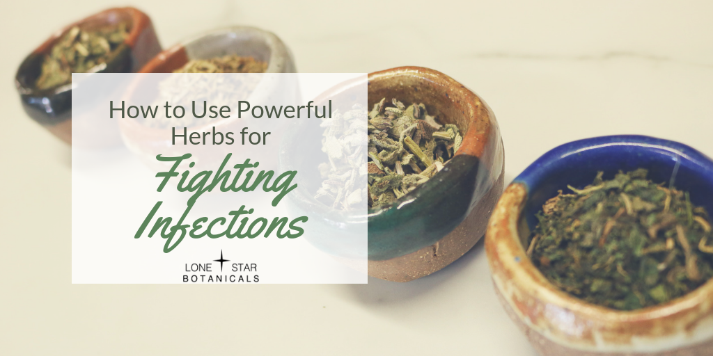 Herbs for fighting infections