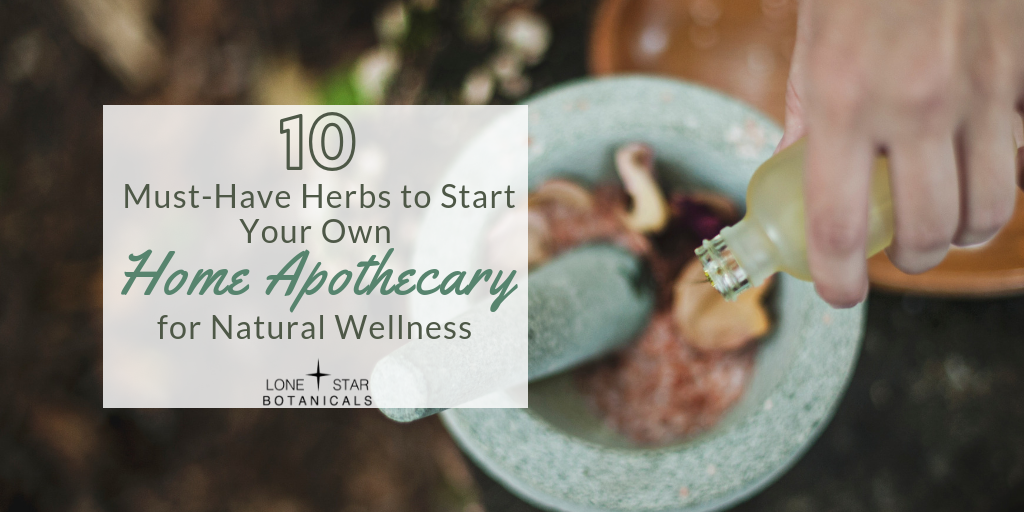 10 Must-Have Herbs to Start Your Own Home Apothecary for Natural Wellness