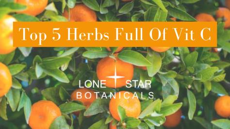 Top 5 Herbs Full Of Vitamin C